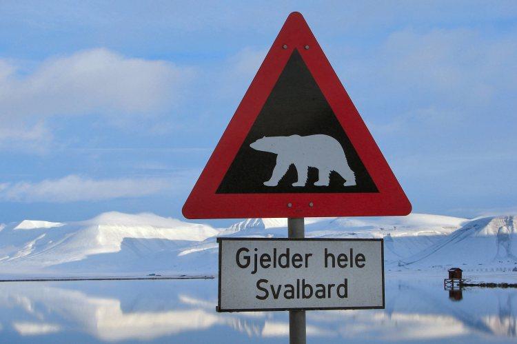 Polar-Bear-Warning-Longyearbyen