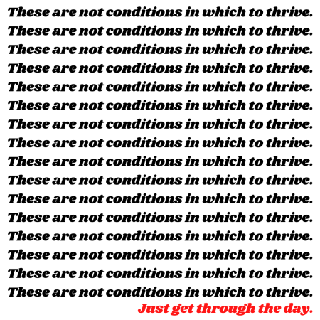 conditions in which to thrive